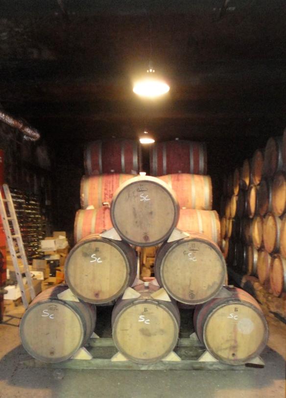 """"""" vin Bio"""" """" Cave à vin """" """" Mirepoix """""""